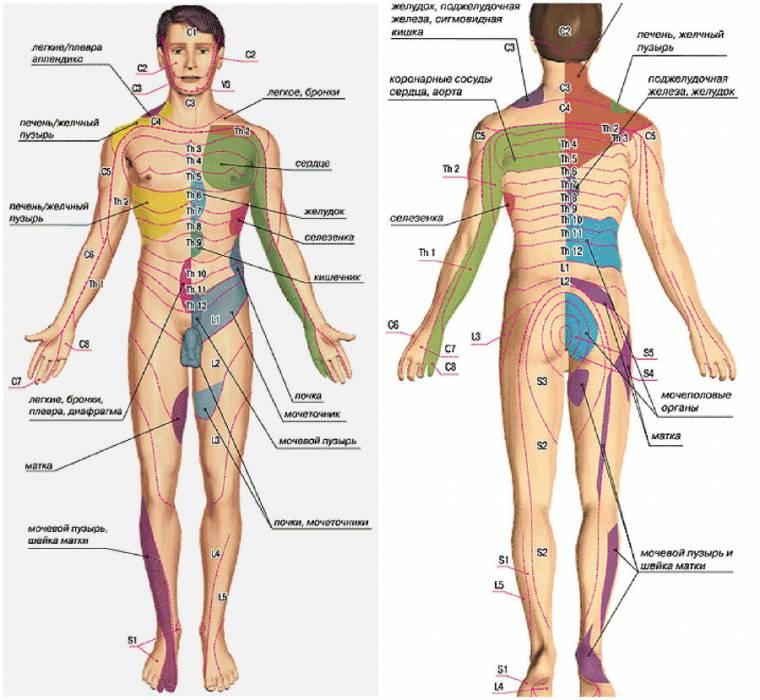 Зарядка для поясничного отдела остеохондроз от грыжи