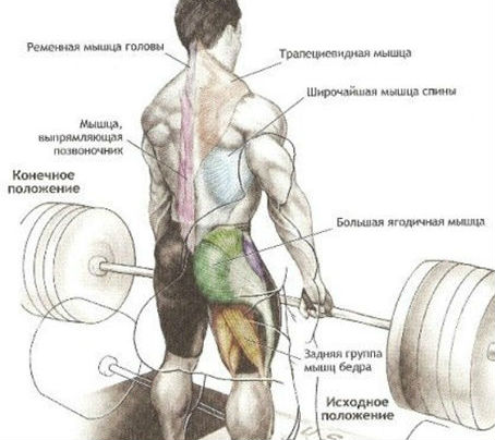Симптомы шейно-плечевого остеохондроза