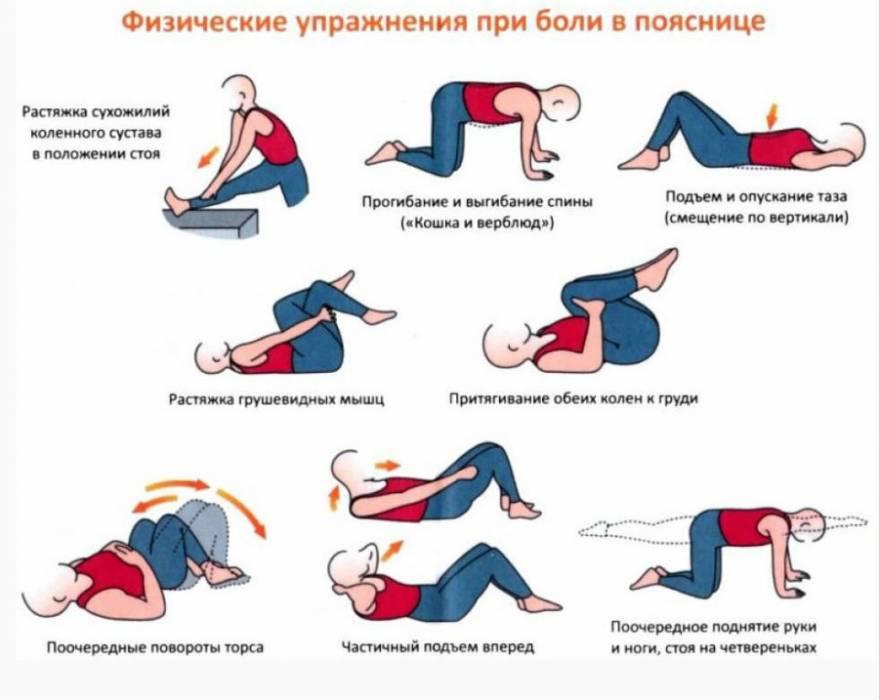 массаж спины в картинках поэтапно