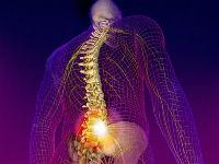 Болит спина в области поясницы слева причины