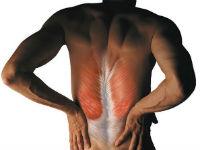 Боль в мышцах спины