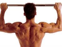 Накачанные мышцы спины