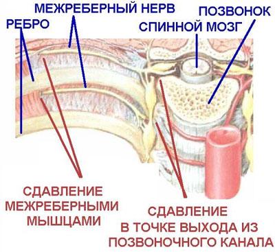 -пенсированные заболевания внутренних органов: