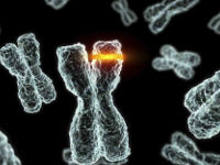 Деффект в хромосоме