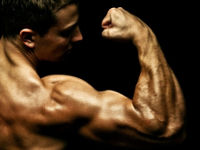 Изображение - Крепление мышц плечевого сустава mishci-plch