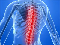 заболевания спины