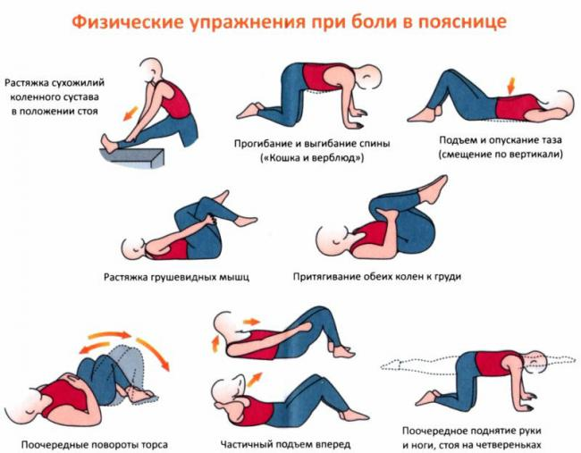 упражнения для укрепления мышц спины
