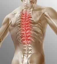 Боль а грудном позвоночнике