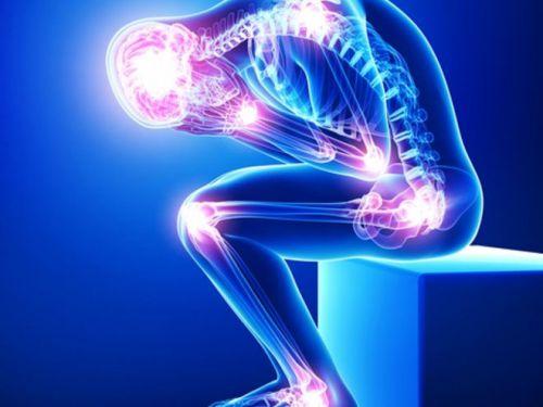 Скелет человека и суставы
