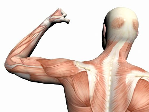 Электростимуляция мышц аппаратом, помогает ли для похудения, отзывы