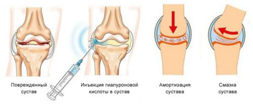 ukoly-artr-5-500x208