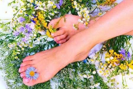 Ноги в травах