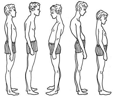 Упражнения против сутулости тренажерный