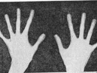 Паучьи пальцы