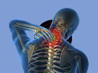 Шейный отдел спинного мозга имеет сегментов